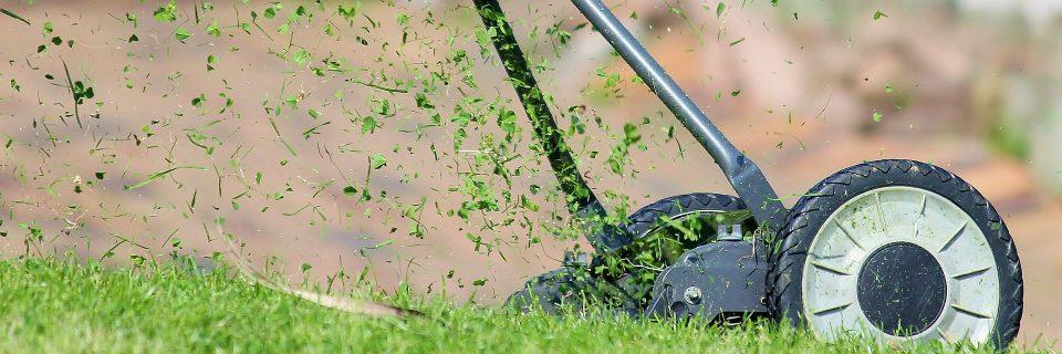 Tu empresa de jardinería en Zaragoza.