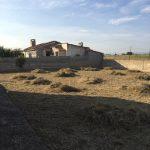 Desbroce y limpieza de parcela en Zaragoza