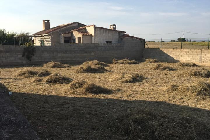 Desbroce y limpieza de parcela en Zaragoza provincia